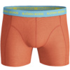 Bjorn Borg 1pk Shorts Essential - Flame
